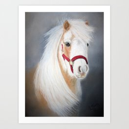Mini Horse Art Print