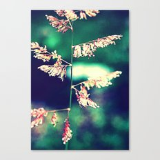 Flowers in Germany Canvas Print