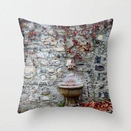 Acqua Potabile Throw Pillow