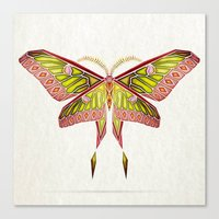 moth Canvas Prints featuring moth by Manoou