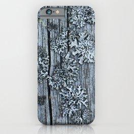 Lichen on Wood iPhone Case