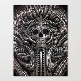 Behind the Veil Close-Up Canvas Print