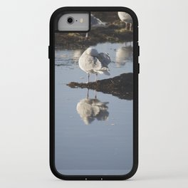 Coastal Seagulls iPhone Case