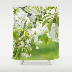 White cherry blossoms romance Shower Curtain