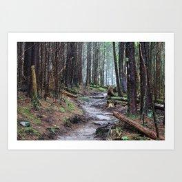 Through the Wilderness Art Print
