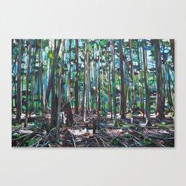 Galiano Forest Floor (2012) Canvas Print