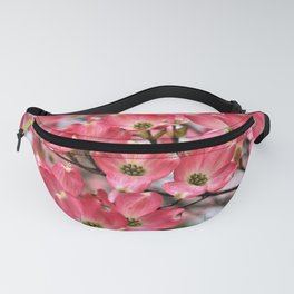 Stunning Pink Dogwood Blooms Fanny Pack