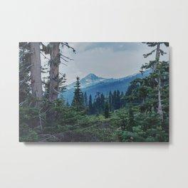 Mt Rainer Between the Trees Metal Print