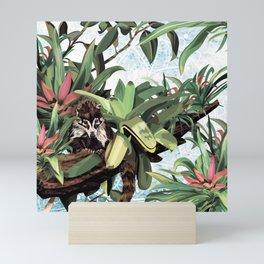 Ring tailed Coati Mini Art Print