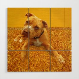 CHENiLLE (shelter pup) Wood Wall Art