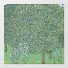 Gustav Klimt - Rosebushes under the Trees Canvas Print