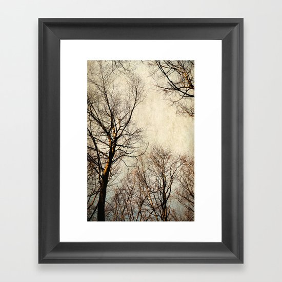 paint the sky with branches Framed Art Print