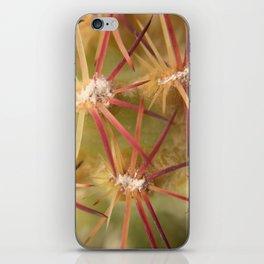 Cactus spines iPhone Skin