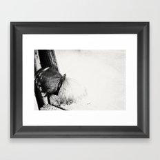 trapped ... Framed Art Print