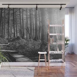 Adventure Nature Path Black and White Wall Mural