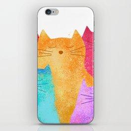 Rainbow cats iPhone Skin
