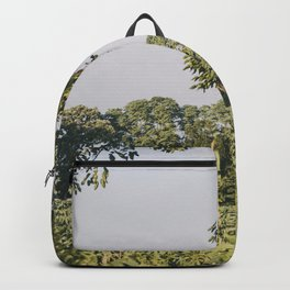 Midwest Summers, VI Backpack