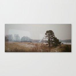 Landscape of Swedish winter Canvas Print