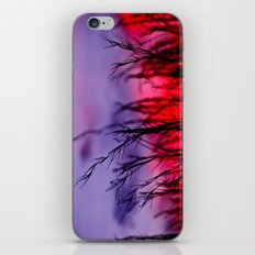 Colors to the West iPhone & iPod Skin
