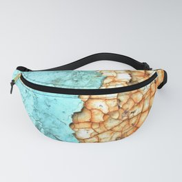 Two Faced Fanny Pack