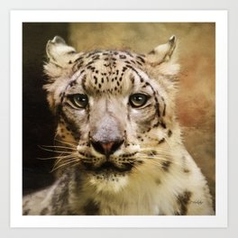 Hope For Tomorrow - Snow Leopard Art Art Print