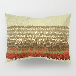 COLOR 35 Pillow Sham