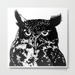 portrait of the owl Metal Print
