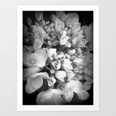 Simply Shabby fleur Art Print