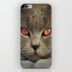 Tomcat Diesel iPhone & iPod Skin