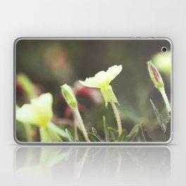 Gentle Landscape Laptop & iPad Skin