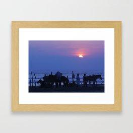 Horses on an Acapulco Beach Framed Art Print