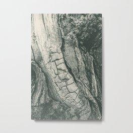 Tree Spine 01B Metal Print