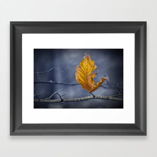 Last Leaf of Autumn Framed Art Print