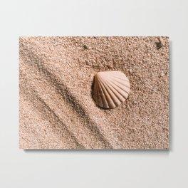 Summer Sea Shell Metal Print
