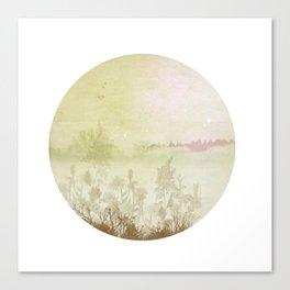 Planet  21001 Canvas Print
