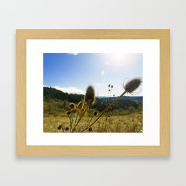 Colorful Winter Day Framed Art Print