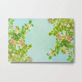 Blush Pink Camellias with Lime on Aqua Metal Print