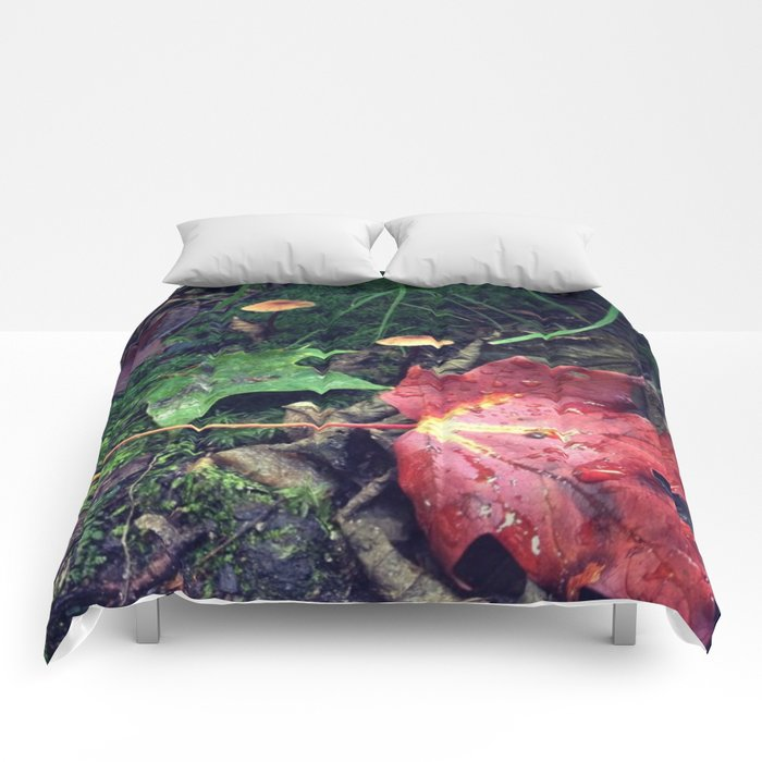 Trail Colors Comforters
