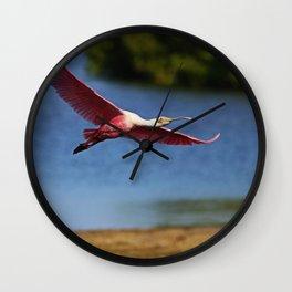 The Spoonbill in Flight at Ding Wall Clock