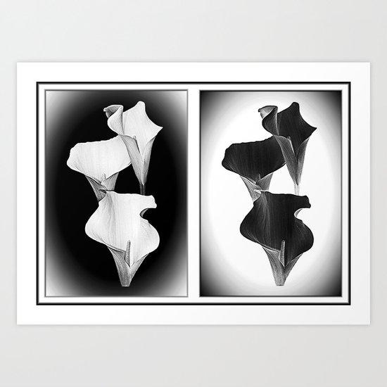Calla Lillies. Black + White. Art Print