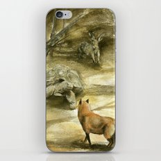 The Tortoise and the Hare iPhone & iPod Skin