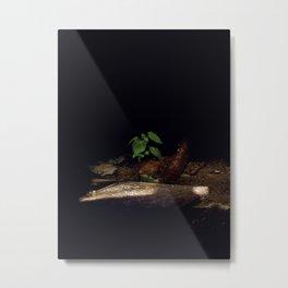 Brave Nature Metal Print
