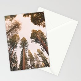 Sequoia Sunset Stationery Cards
