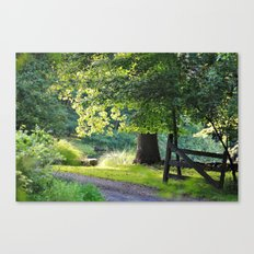 Sunshine and Shadows Canvas Print