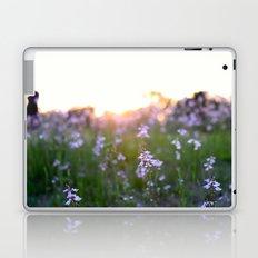 Sunset in Spring Laptop & iPad Skin