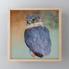 Bird Art: Merlin Framed Mini Art Print