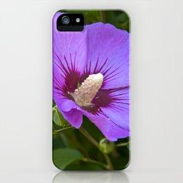 Pink Floral Impression iPhone Case