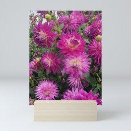 Pretty in Pink Dahlia 2 Mini Art Print