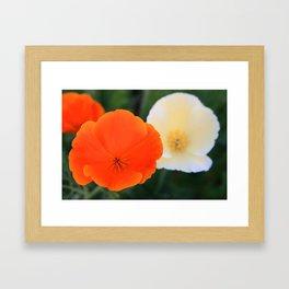 Orange Cream Framed Art Print
