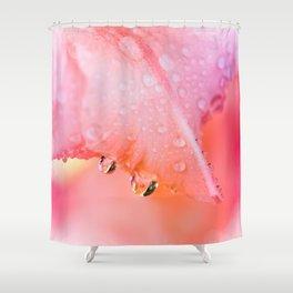 Tear drops of gladiolus  Shower Curtain